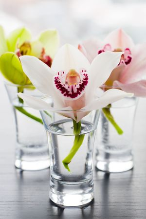 beaty: beaty orchids in small glass vases