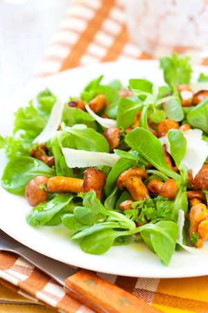 salad with chanterelles and parmesan photo