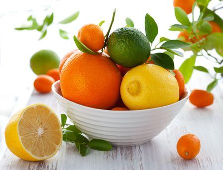 Stilleben mit Orangen, Zitronen, Limetten, Kumquats, Citrofortunella und Mandarinen