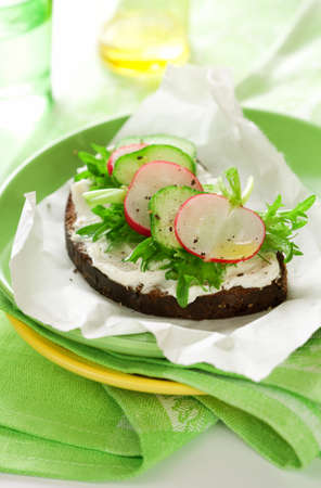 Sandwich with soft cheese ,radish and cucumber on the plate photo