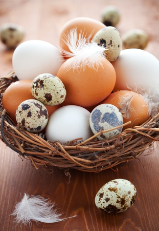 Different types of eggs in a  nest with feathers on a wooden table photo