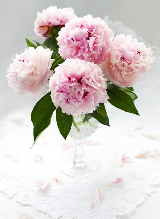 composition: Vase of pink peony on a white background Stock Photo