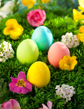 colorful Easter Eggs  on the grass photo