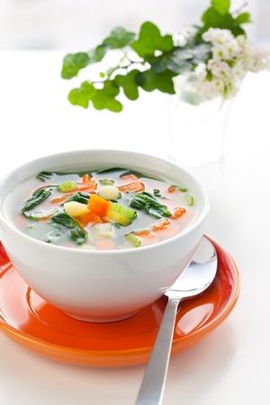 apio: sopa de verduras con Papa, zanahoria, apio y espinacas