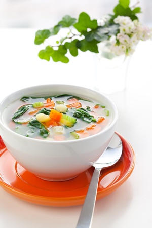 celery: vegetable soup with potato,carrot,celery and spinach Stock Photo