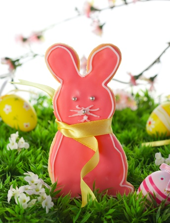 Homemade Easter bunny cookies and easter eggs on the grass photo