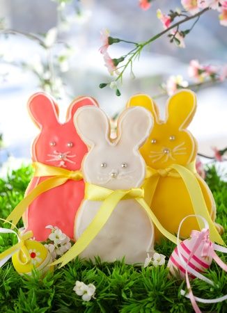 Homemade Easter bunny cookies and easter eggs on the grass Stock Photo - 9045790