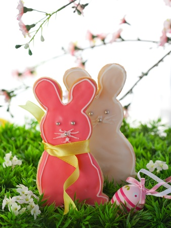 Homemade Easter bunny cookies on the grass photo