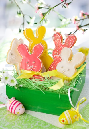 Homemade Easter bunny cookies in gift box Stock Photo - 9118685