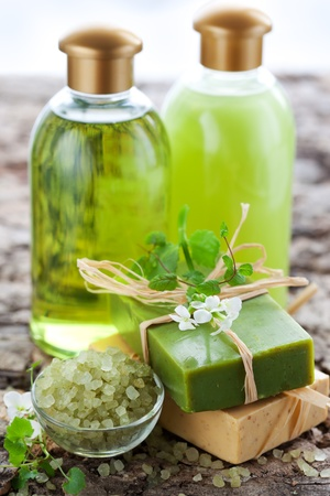 natural product: SPA and body care products