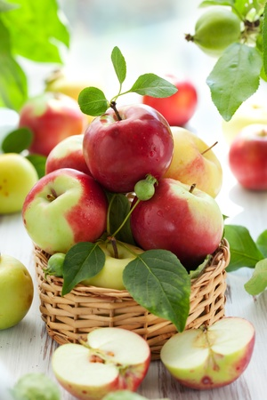 apple basket: Red,green and yellow apples with leaves in the basket