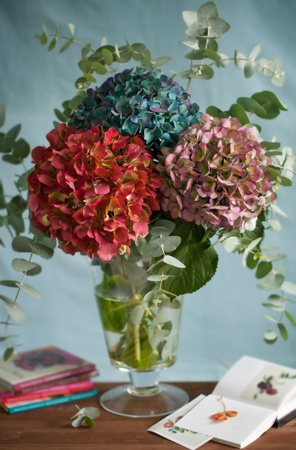 An autumnal bouquet of hydrangeas on a  table photo