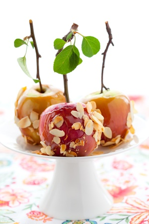toffee: Caramel apples with nut coating on a wooden stick Stock Photo