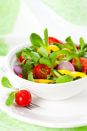 fresh salad with vegetables Stock Photo - 10413602