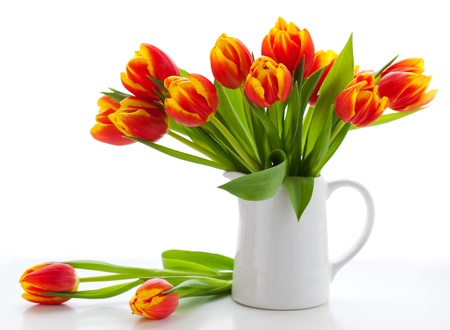 red tulips in a jug on white background