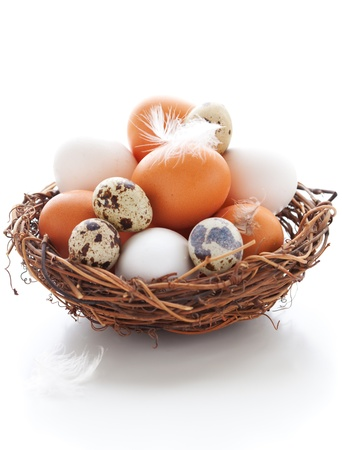 Different types of eggs in a  nest with feathers on a white background photo