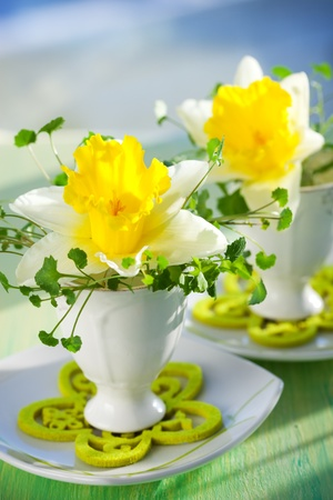 Easter decoration: narcissi in eggcups photo