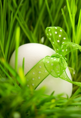 Easter egg with ribbon on the grass photo