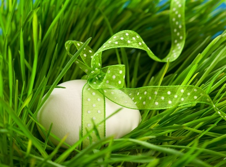 easter decorations: Easter egg with ribbon on the grass