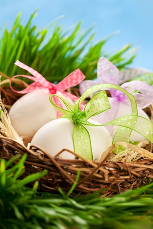 Easter eggs in a nest on the grass photo