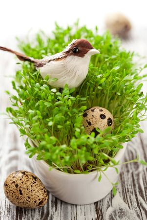 Easter decoration: birds and eggs on the fresh cress photo