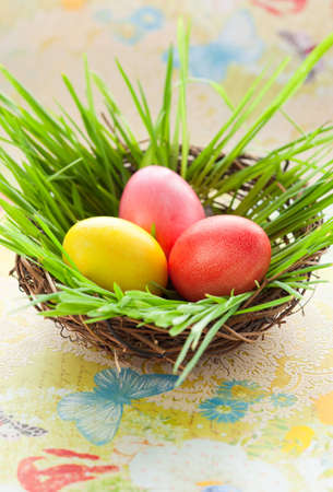 Easter nest with coloured eggs photo