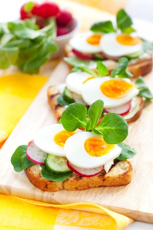 Fresh toast sandwiches with egg,radish,cucumber and soft cheese Stock Photo - 12659520