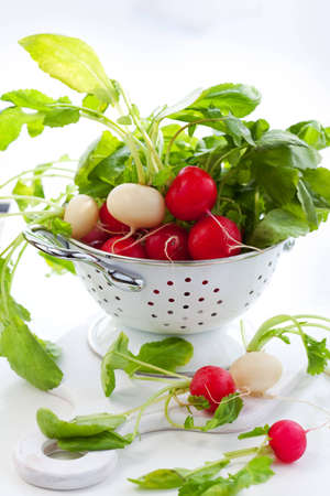 Fresh red and white radish photo