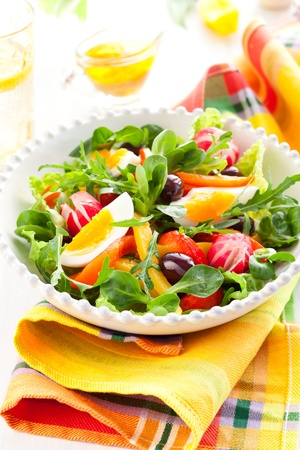 spring salad with grilled pepper,radish,olive and egg Stock Photo - 13005331
