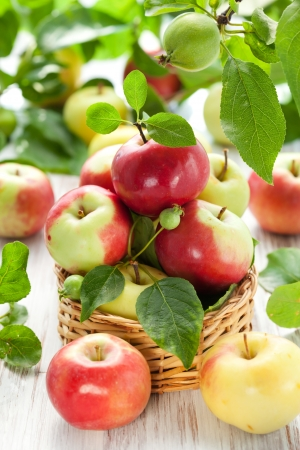Red,green and yellow apples with leaves in the basket photo