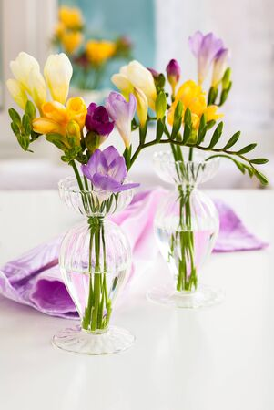bunch of colorful freesia flowers Stock Photo - 18069297