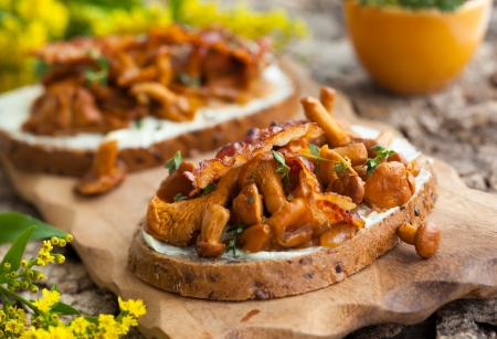 chanterelle: Chanterelle sandwiches with cheese,bacon and thyme