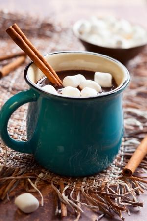 Warme chocolademelk met marshmallows en kaneelstokje