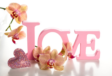 Word love with orchid on the white background photo