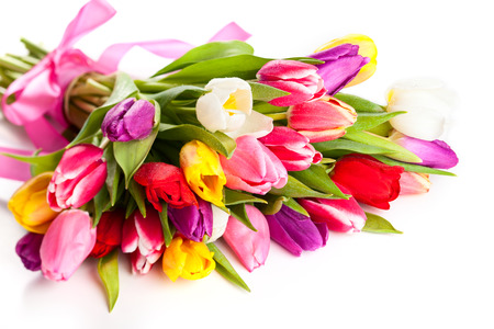 bunch of spring tulips on the white background Stock Photo - 25208137