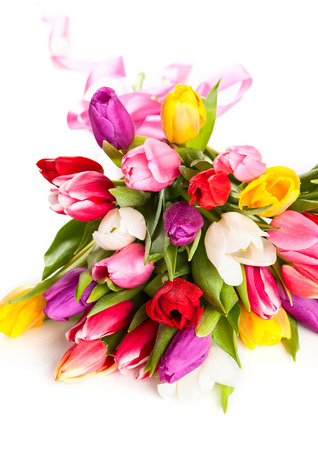 bunch of spring tulips on the white background photo