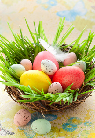 Easter nest with coloured and chocolate eggs photo