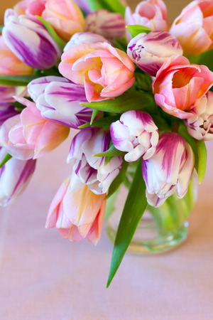tulips in vase: bouquet of colorful tulips in vase