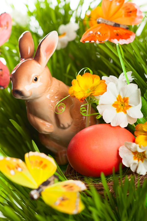 Easter egg and rabbit on green grass photo