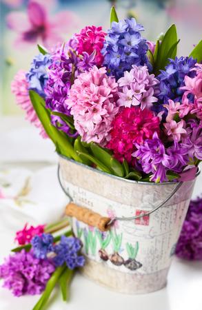 hyacinths: Group of beautiful multicolored hyacinths Stock Photo