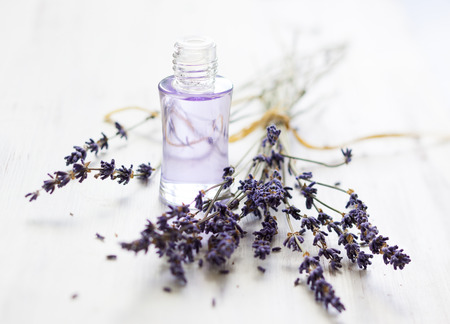 Lavender oil and bunch of dried lavender flower 版權商用圖片 - 28269356