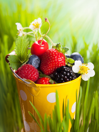 Fresh berries in  bucket on the grass photo