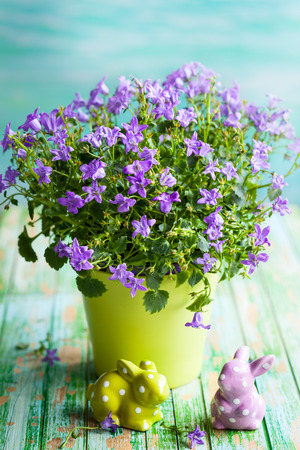 Campanula flowers in a pot and Easter rabbits on the vintage wooden table photo