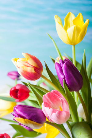 Spring background with colorful tulips in vintage style
