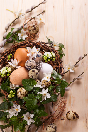 eggs in a nest with flowers,feathers on a wooden table photo