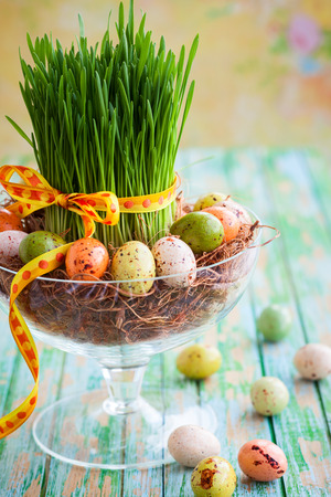 Easter composition with fresh green grass and chocolate eggs