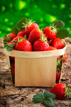 strawberry baskets: Fresh strawberries in a basket in the summer garden Stock Photo