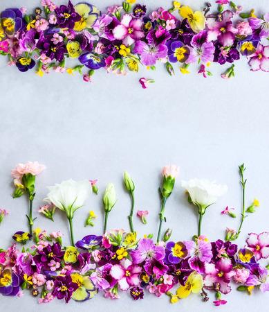 Achtergrond van verse veelkleurige bloemen