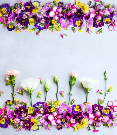 Background of fresh multicolored flowers Stock Photo