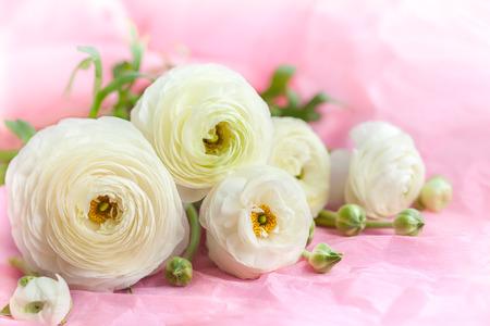 beautiful flowers: Beautiful bunch of white flowers